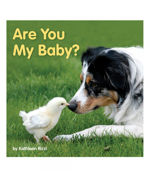 Are You My Baby?