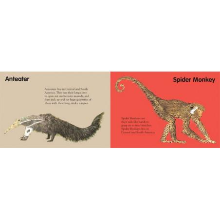 BRIAN WILDSMITH'S ZOO ANIMALS